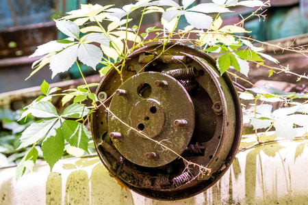 wrecked: Rusty Old Wheel in the Weed on a wrecked car