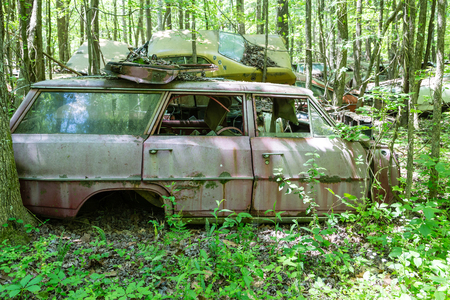 station wagon: An Old Pink Station Wagon broken in the woods Stock Photo