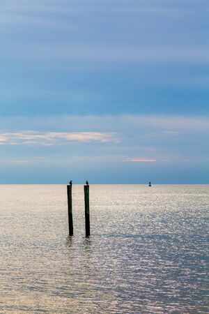 pilings: Birds on Pilings Against Stormy Sky and silver water