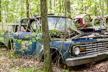 rustic: Rustic car