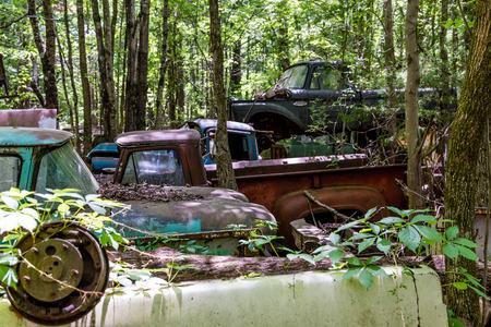 rustic: rustic trucks