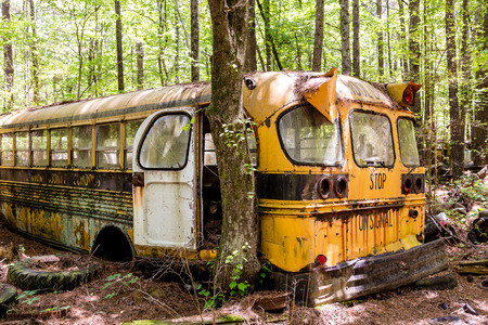 abandoned car: Rusted out old school bus abandoned in the woods Stock Photo