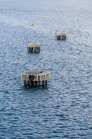 pilings: Yellow Float Beyond Three Concrete Pilings on St KItts