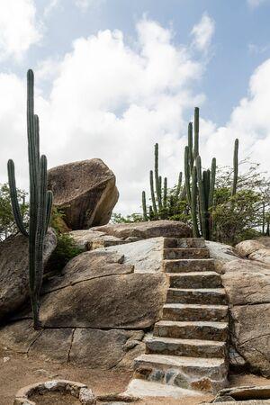 caved: Boulders, Divi Divi Trees and Cactus in Aruba Garden