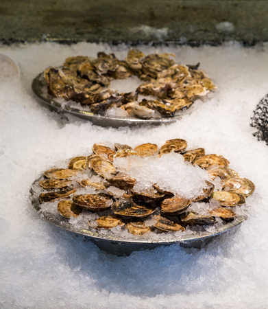 Trays of Oysters on Ice in a Market