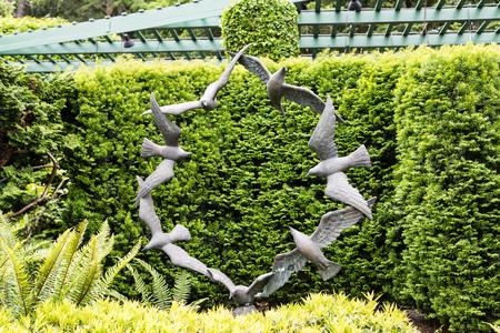 Circle of Doves in Public Garden