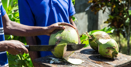 Chopping Green Coconuts on Dominica
