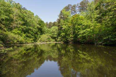 푸른 하늘 아래 녹색 숲에서 진정 호수 반영 스톡 콘텐츠