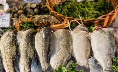 Verse gefriesde vis in een zeevruchtenmarkt Stockfoto - 81183660