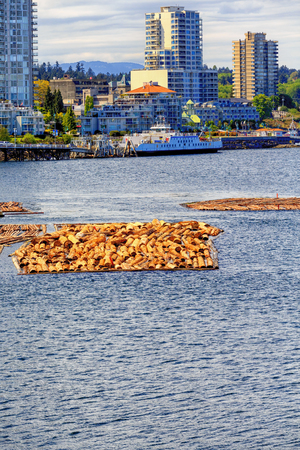 Timber Rafting in Nanaimo
