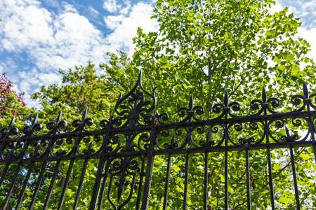 Black Wrought Iron Against Green Trees Banco de Imagens