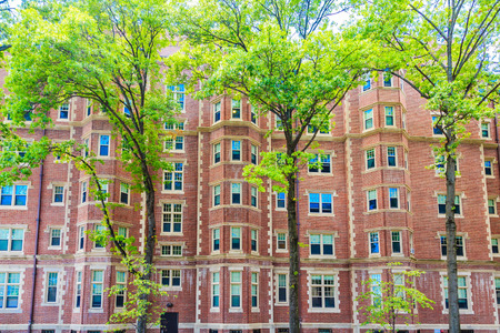 Trees by Massive Brick Building