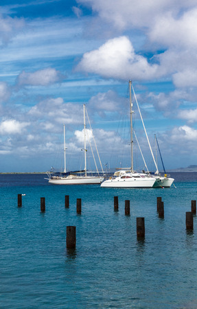 White Sailboats Moored in Bonaire