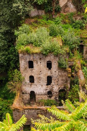 Old Overgrown Building in Sorrento Valley
