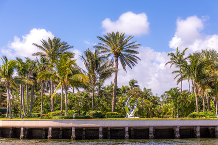 Statue on the Intracoastal