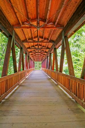 Bridge Into the Light