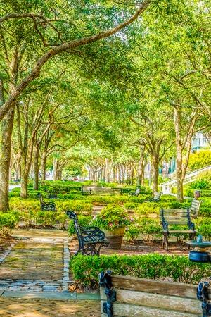 Beautiful Park in Charleston