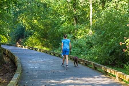 Woman Walking Dog on Path Standard-Bild - 137199880