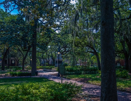 One of the many beautiful square parks in Savannah, Georgia