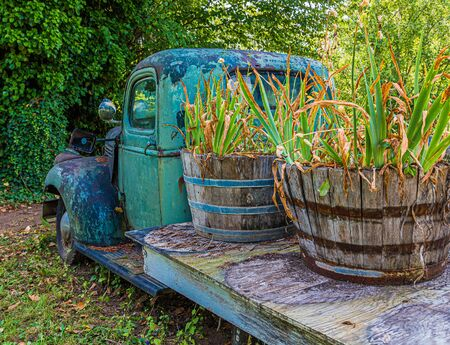 Old Truck with Plants Stock Photo