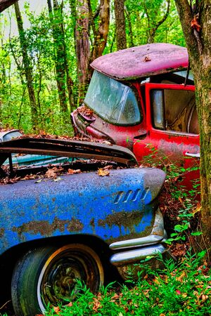 Blue Car and Red Truck Wrecked in the Woods 免版税图像
