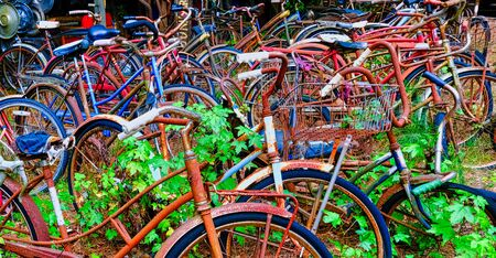 Old Rusty Bicycles