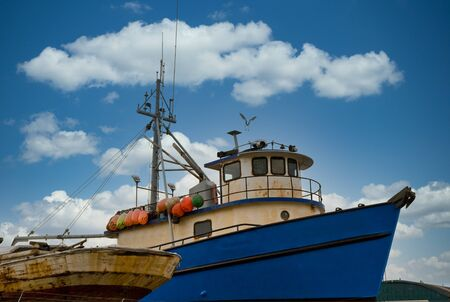 An old blue tugboat in dry dock with a seagull flying over