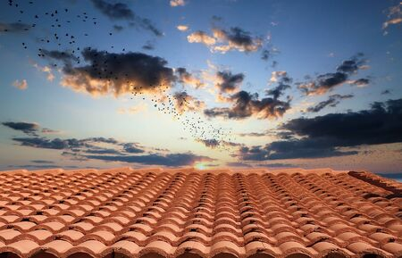 A curved red clay tile roof under a clear blue sky