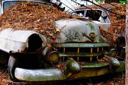 Rusted Out Old Cadillac