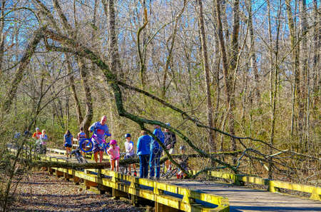 Downed Tree on Walking Trail