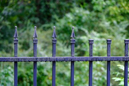 Wet Wrought Iron Fence