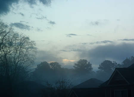 Foggy Sunrise in Winter