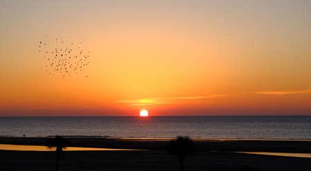 Sun Rising Over Horizon