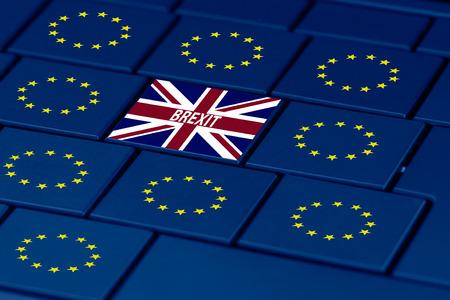 referendum: brexit referendum