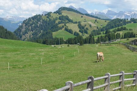 raiser: beautiful val gardena and dolomity in italy