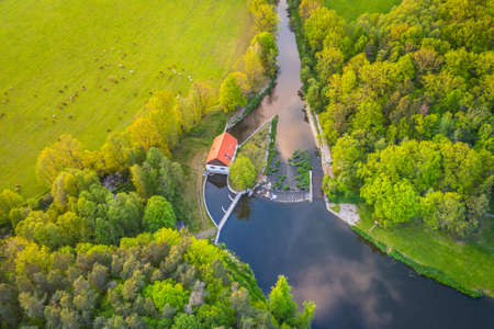 Trebon region stands out for its extraordinary variety of habitats. The most valuable biotopes of the Trebon region include the so-called transitional peat bogs, forests and many ponds and lakes. Stok Fotoğraf - 124692824