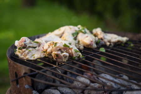 Grill garden party with meat on hot briquettes in Czech Republic, Liberec region Stok Fotoğraf - 124693814