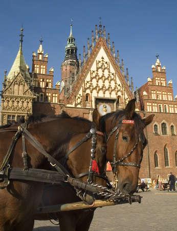 wroclaw: poland wroclaw town hall