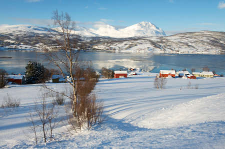 Winter view to Lavangen fjord and Soloy village, Troms county, Norway. photo