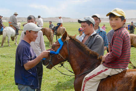 mongolia horse: Harhorin, Mongolia, August 26, 2006 - Men attach blue ribbon to the bridle of winners horse circa Harhorin, Mongolia. Local horse races in Mongolia are held very often. Editorial