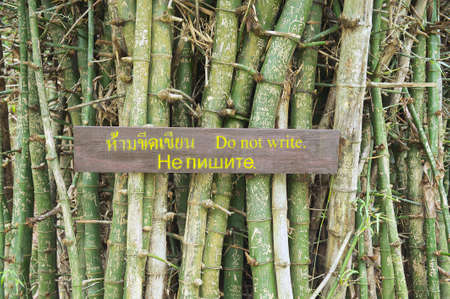 bark carving: Do not write sing at the clump of bamboo trunks with names on the bark in Suphan Buri, Thailand.