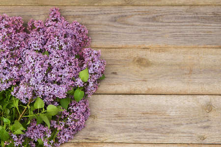 lilac background: Fresh lilac flowers on the old wooden table.