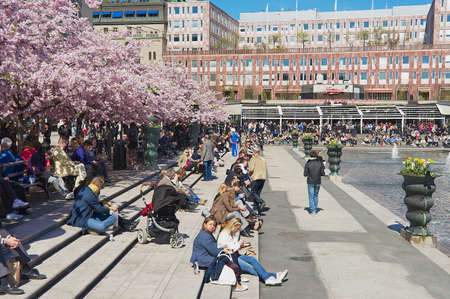 lunchtime: Stockholm, Sweden, April 28, 2011 - People enjoy lunchtime under blossoming cherry trees at Kungstradgarden in Stockholm, Sweden.