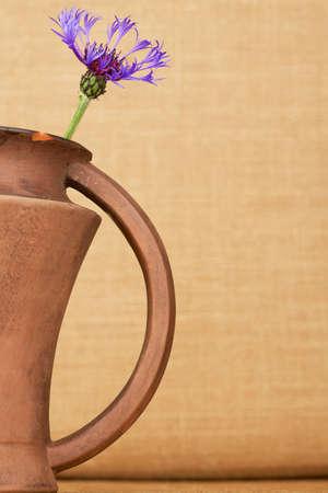 centaurea: Cornflower centaurea cyanus in the brown ceramic pitcher against the beige background. Stock Photo