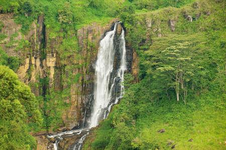 kandy: Waterfall in a rainforest near Nuwara Eliya (Central Province), Sri Lanka. Stock Photo