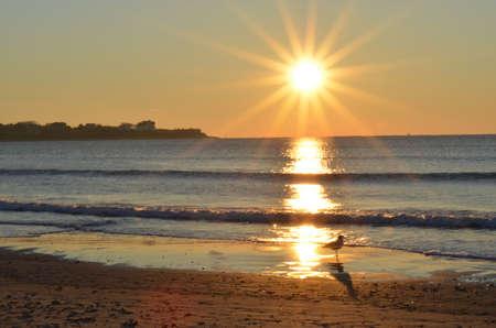 Bright sunlit beach Banco de Imagens