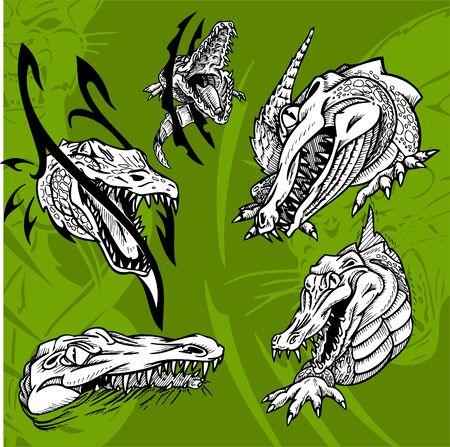 jaw: Crocodiles and Alligators.Predators.