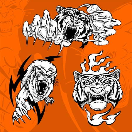 Tiger and Lion.Predators.  Stock Vector - 7230730