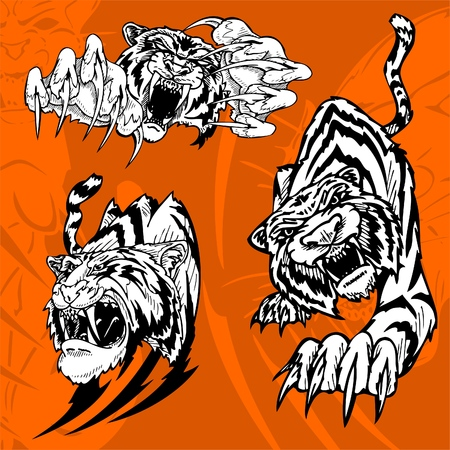 Tiger.Predators.  Stock Vector - 7230729