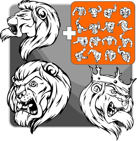 snarling:  lion. Mascot template Illustration